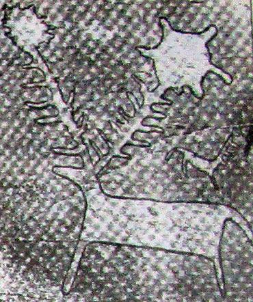 петроглиф алтая